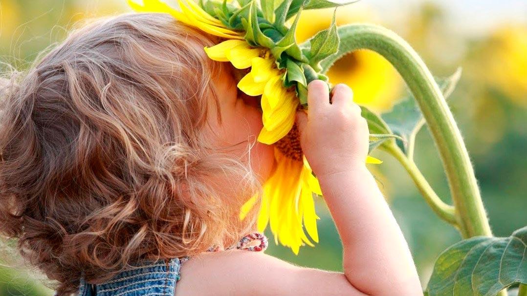 Игры и упражнения для развития восприятия у детей дошкольного возраста